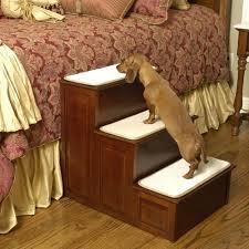 1 escadas para cães