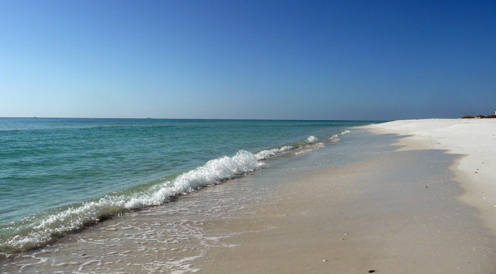 Cruising sand dunes for gay sex shayne 9