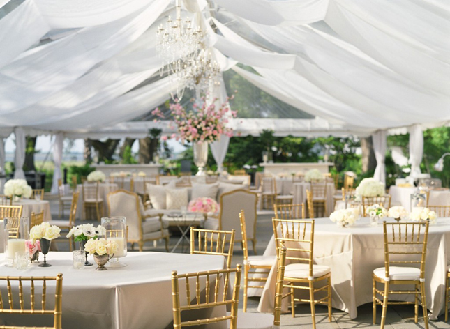 Steal Worthy Wedding}: A Parisian Inspired Southern Affair - Belle
