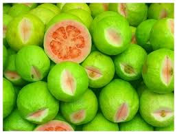 Benefits GUAVA FRUIT for Diarrhea Dysentery