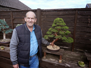 Me with my Chinese Juniper.