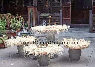 Ginseng, a medicinal herb