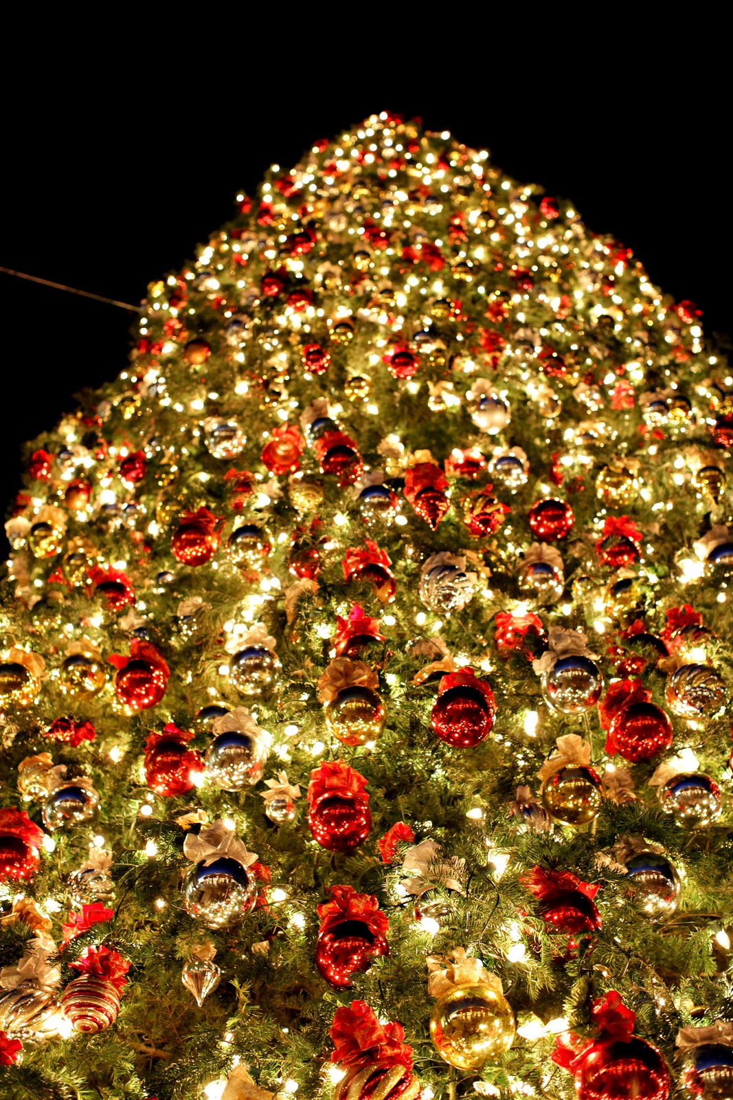 Cached Is the christmas tree at fashion island real