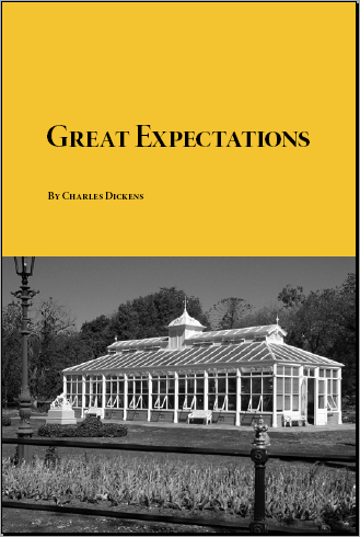 a summary of the novel great expectations by charles dickens Charles dickens - a study guide - great  great expectations by charles dickens  review the first ten chapters of the novel great expectations study guide.