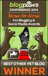 Blogpaws Winner Best Other Pet Blog