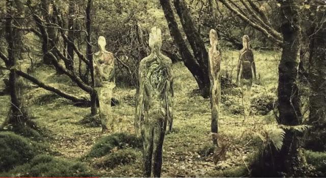"""Entités mystérieuses """"exotiques"""" observés dans le sud du Chili"""