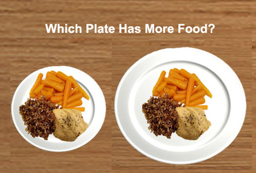 This is a further illustration of the same amount of food on different plate sizes. The larger the plate the smaller the food appeared. & Dietitians Online Blog: Good-bye Food Pyramid Hello Food Plate