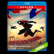 Spider-Man: Un nuevo universo (2018) Escena Post-Créditos Venom
