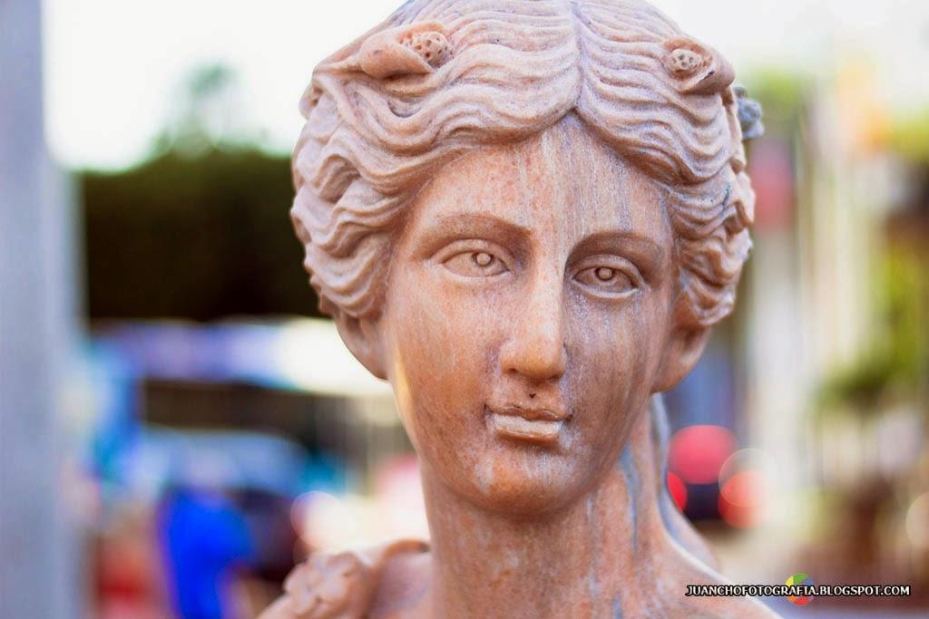 Escultura - Cabeza de Frente
