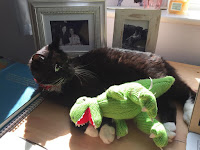 Cat with dinsoaur toy