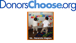 Please help support my class through Donors Choose!