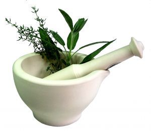 white mortar and pestle with green herbs