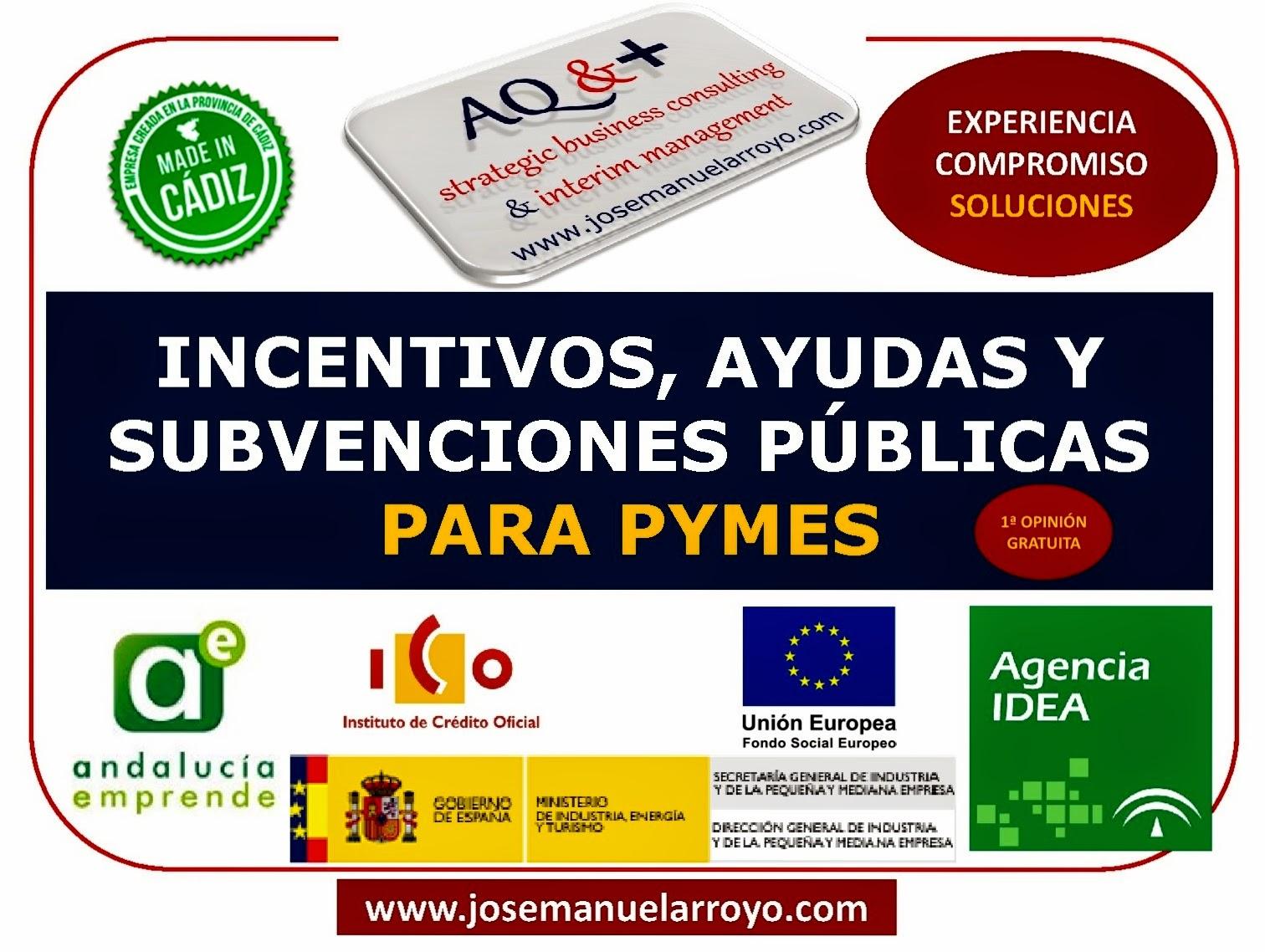 INCENTIVOS, AYUDAS Y SUBVENCIONES PÚBLICAS