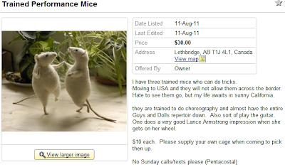 Dancing mice