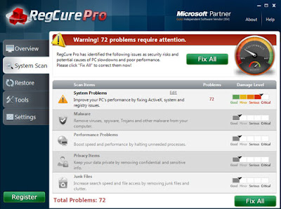 RegCure Pro-detected result