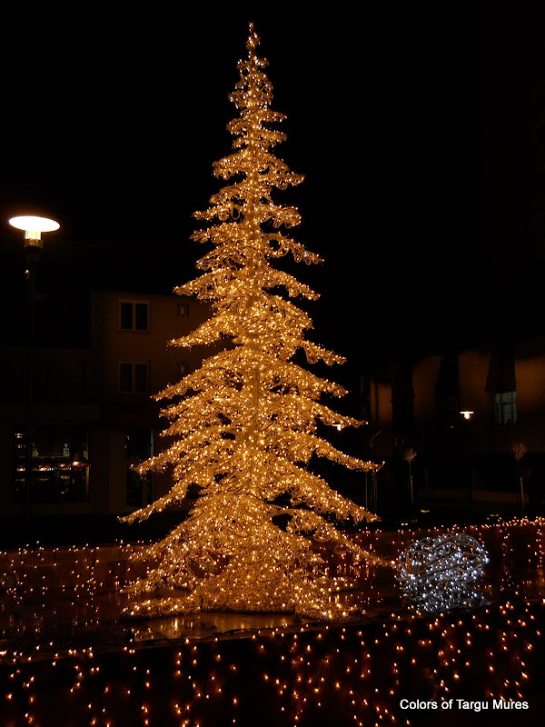 Christmas card Targu Mures. Carte postala Tg. Mures.