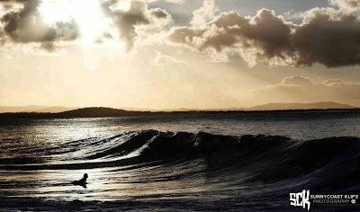 Photography Sunshine Coast