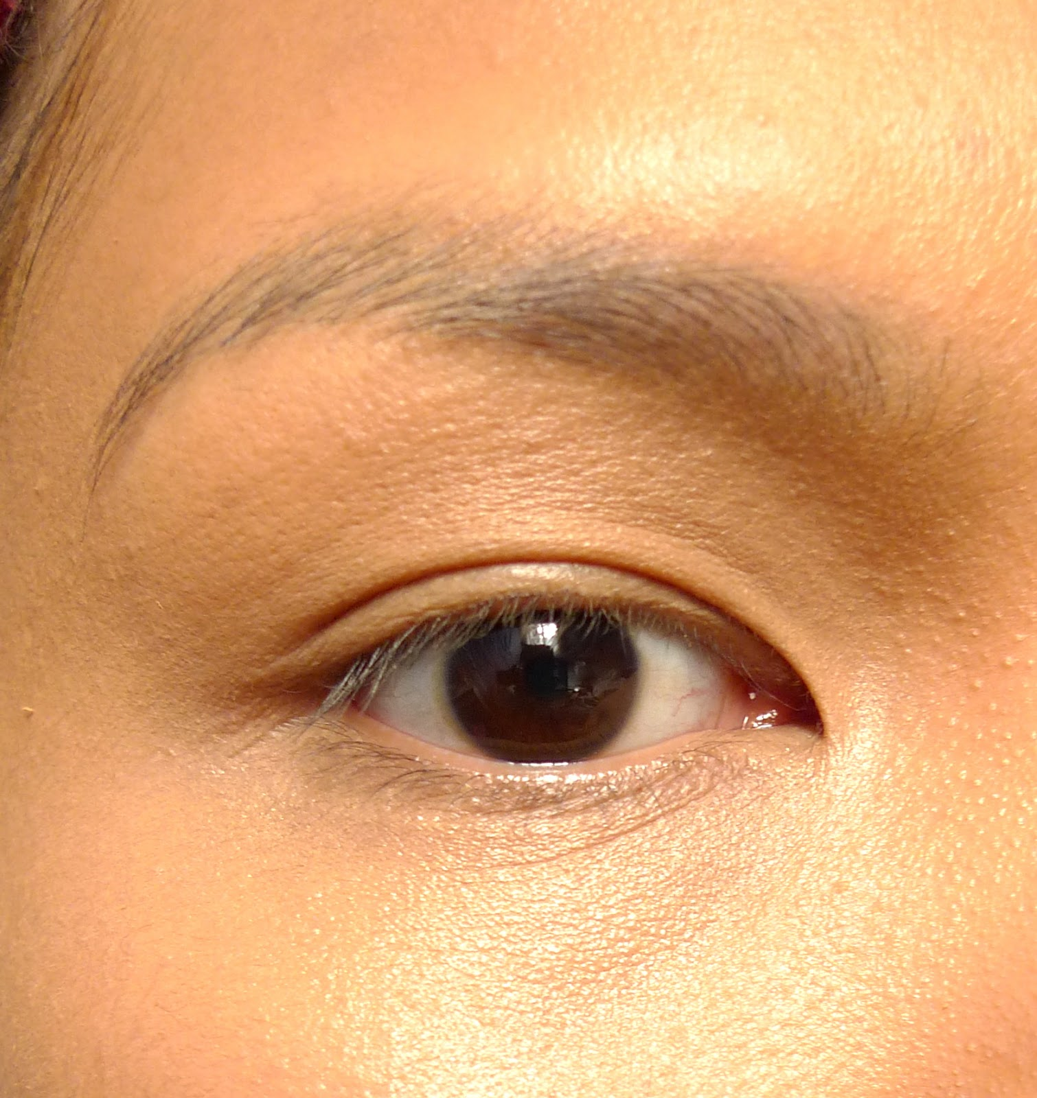 Review Mac Fluidline Brow Gelcreme In Dirty Blonde The Beauty Junkee