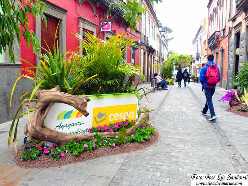 fotos fiesta de la primavera Arucas 2015