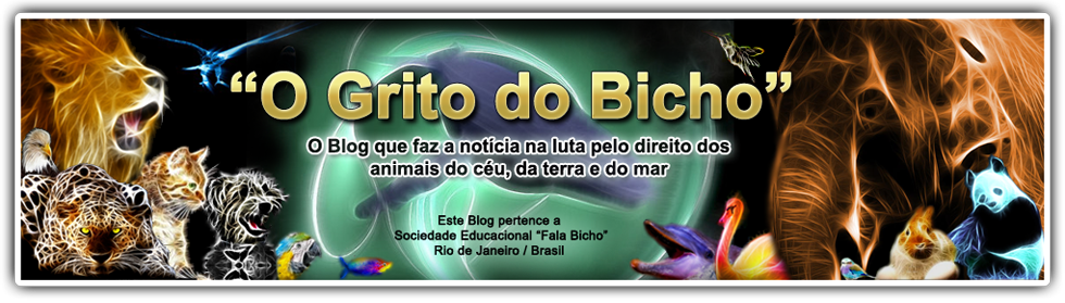 """O GRITO DO BICHO"""