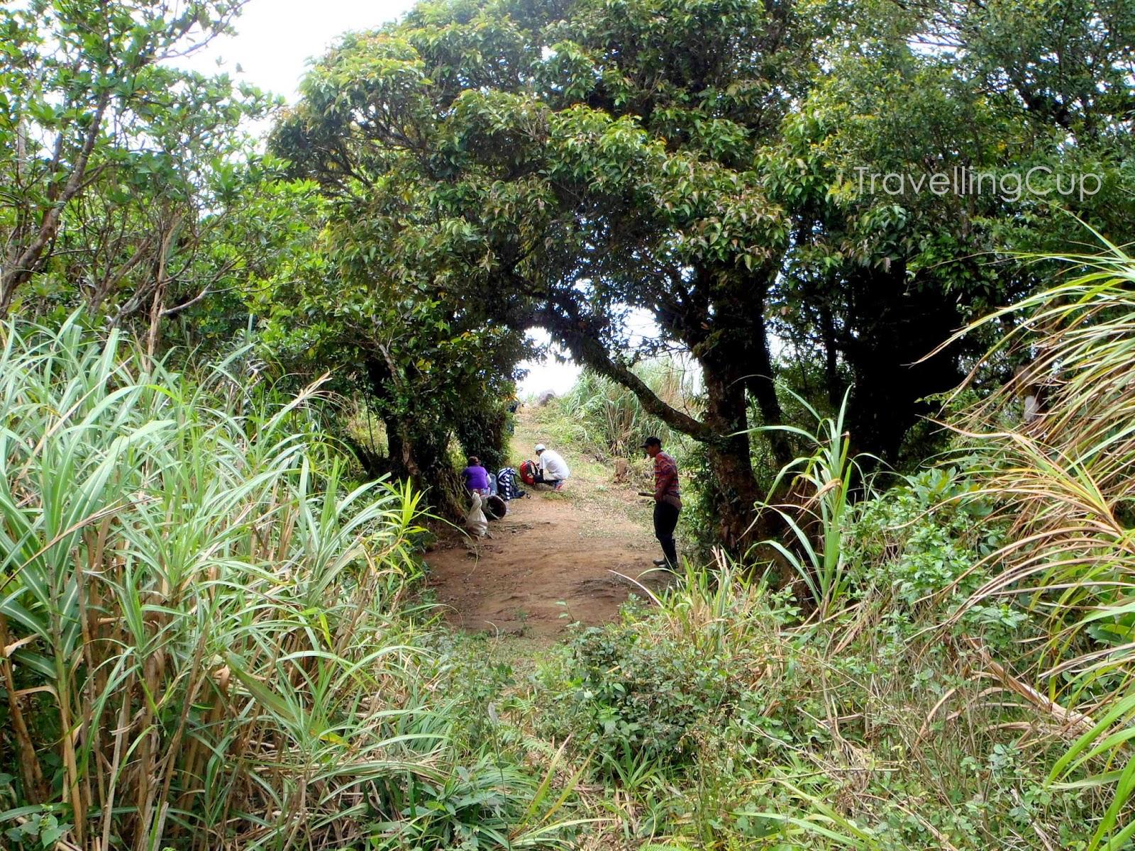 Mt. Malipunyo