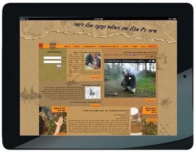שדרוג אתר, עיצוב אתר, מיתוג לאינטרנט