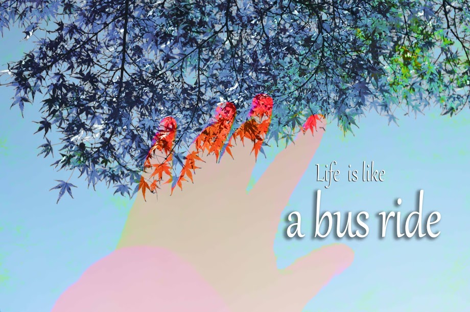 Life is Like a Bus Ride