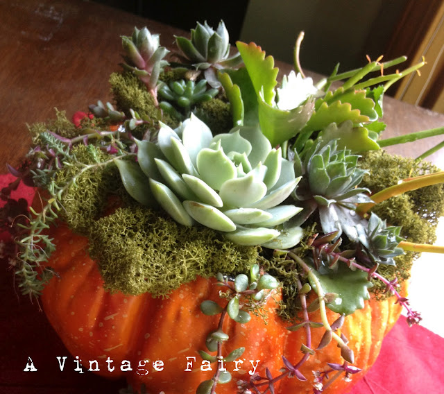30 Plus Featured Pumpkin Ideas for Halloween and Fall - Fox Hollow ...