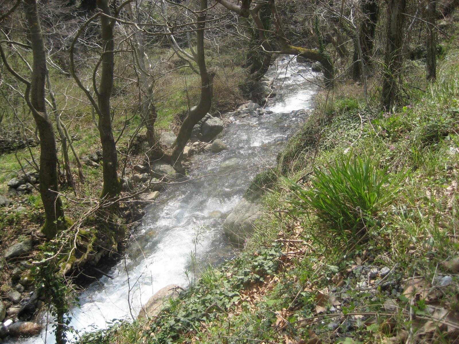 Από το ποτάμι που είναι χάρμα οφθαλμών