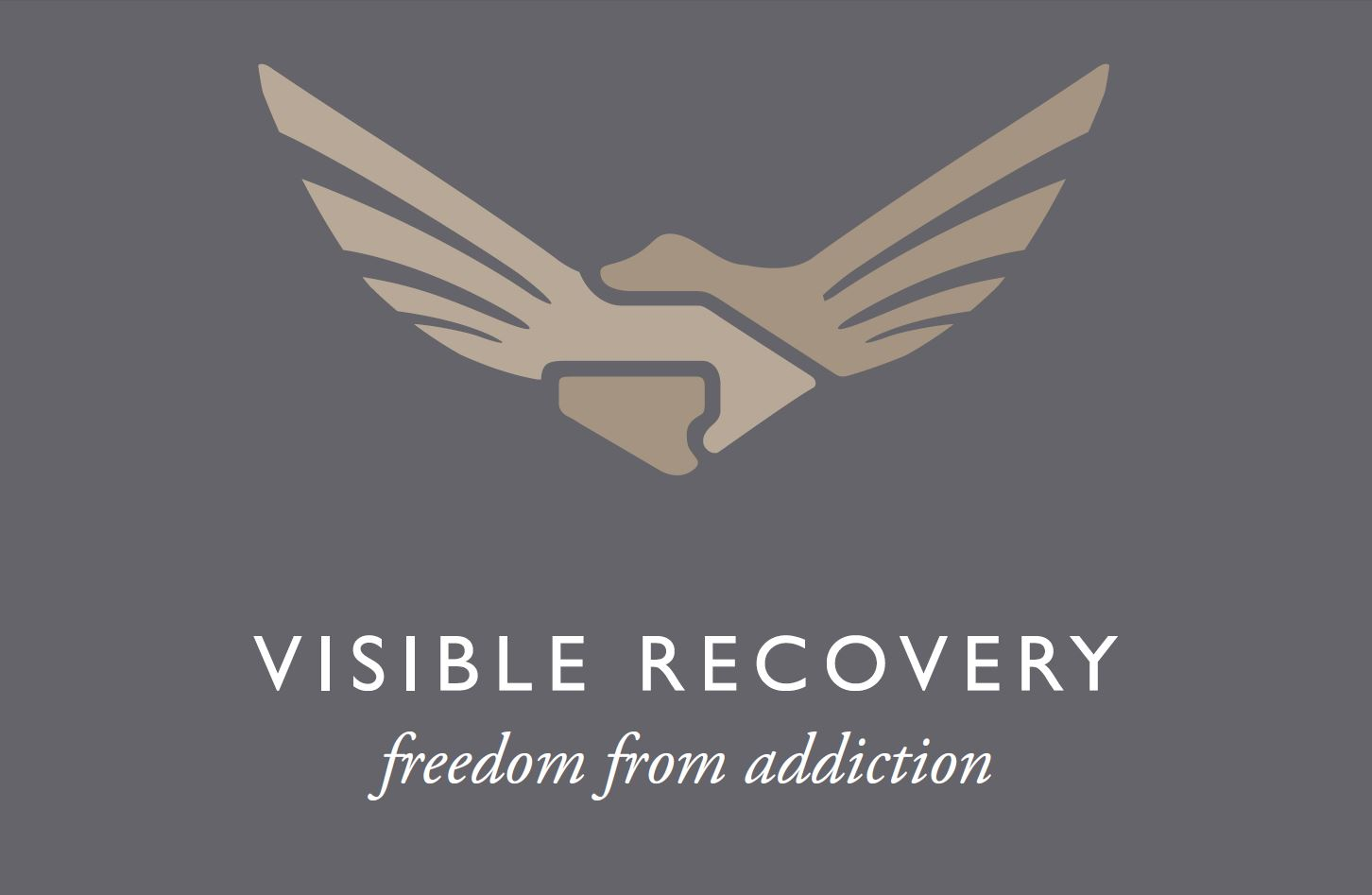 Visible Recovery