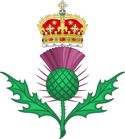 FLOR NACIONAL DE ESCOCIA