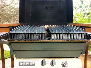 2-zone grilling with GrillGrates on Broilmaster grill
