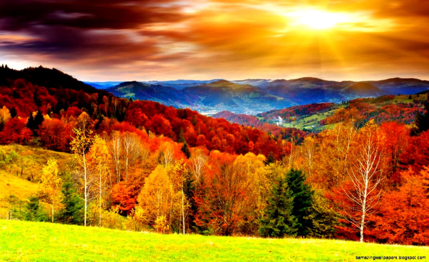 Autumn Background Wallpapers  WIN10 THEMES
