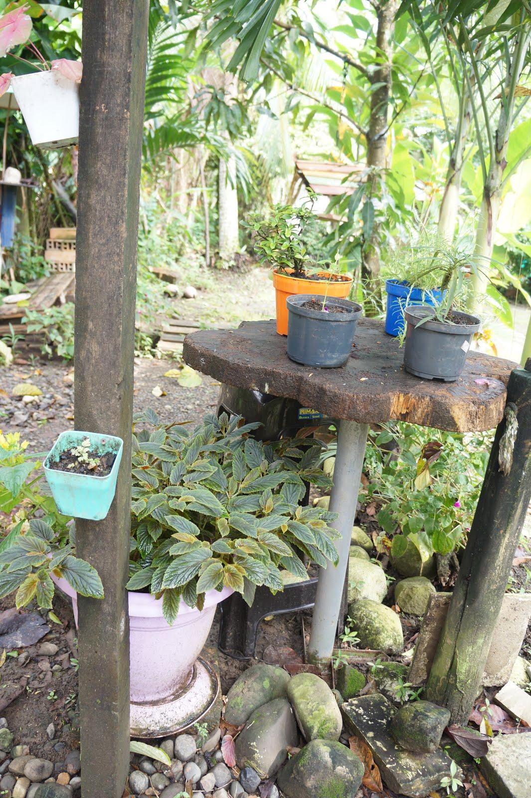 Decoraci n casa rural decorando el patio con material for Plantas y jardines
