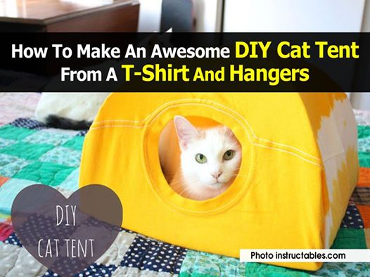 This cat tent is super easy to make - you really just need a t-shirt some wire hangers and a piece of cardboard. As a bonus it really only takes five ... & How To Make An Awesome DIY Cat Tent From A T-Shirt And Hangers ...