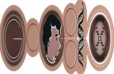 Rosalind Franklin: doodle de Google, 25 de julio