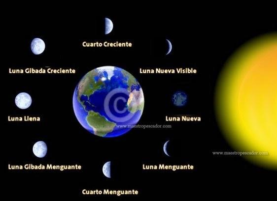 Conocimiento del medio social cultural y natural for Que fase lunar hay hoy