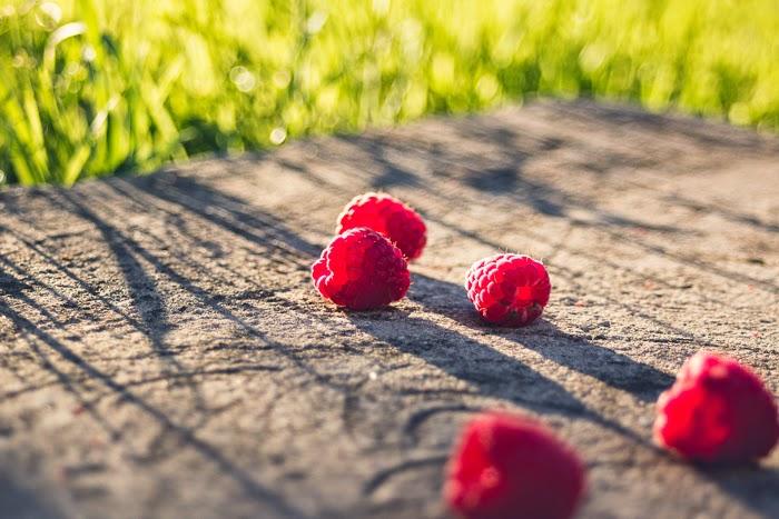 raspberry garden ukraine sunlight summer harvest village