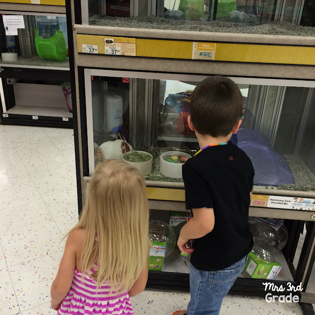 FREE trip to the pet store is great for entertaining toddlers!