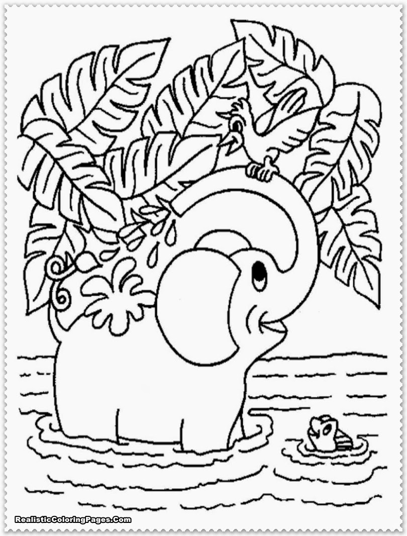 Realistic jungle animals coloring pages for Jungle coloring pages free