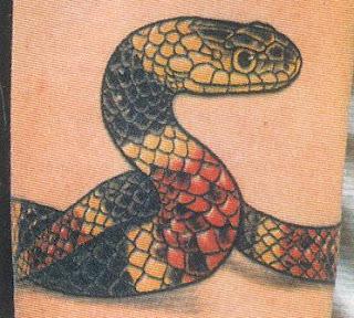 Fotos de tatuagens de cobras coloridas no braço