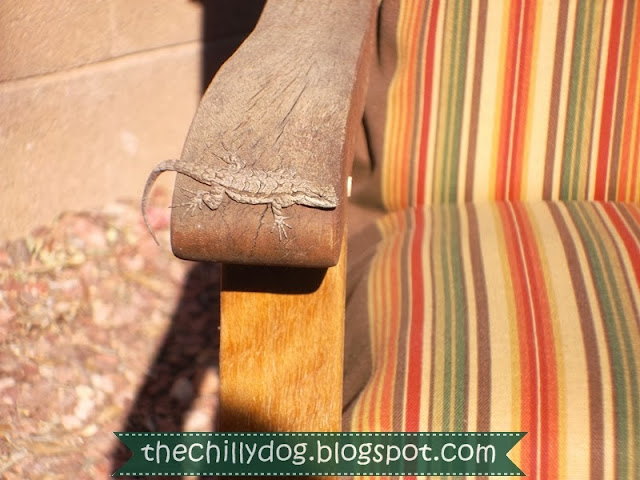 How to make basic chair or bench cushions for patio furniture | The Chilly Dog
