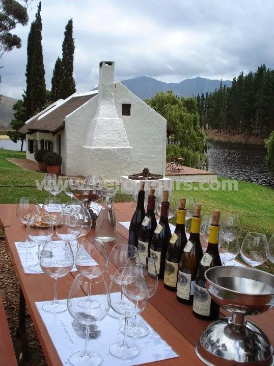 Wine Tours of Hermanus wine valley