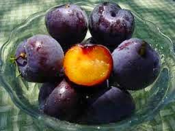 10 Frutas Hibridas que no Conocias