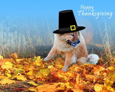 #8 Happy Thanksgiving Wallpaper