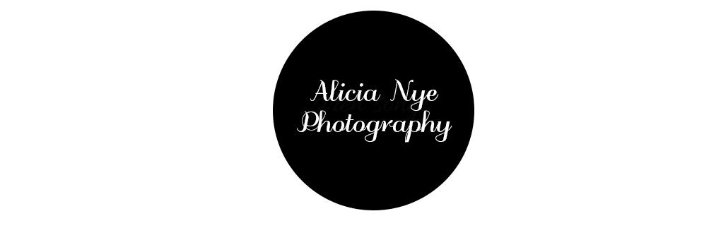 an photography