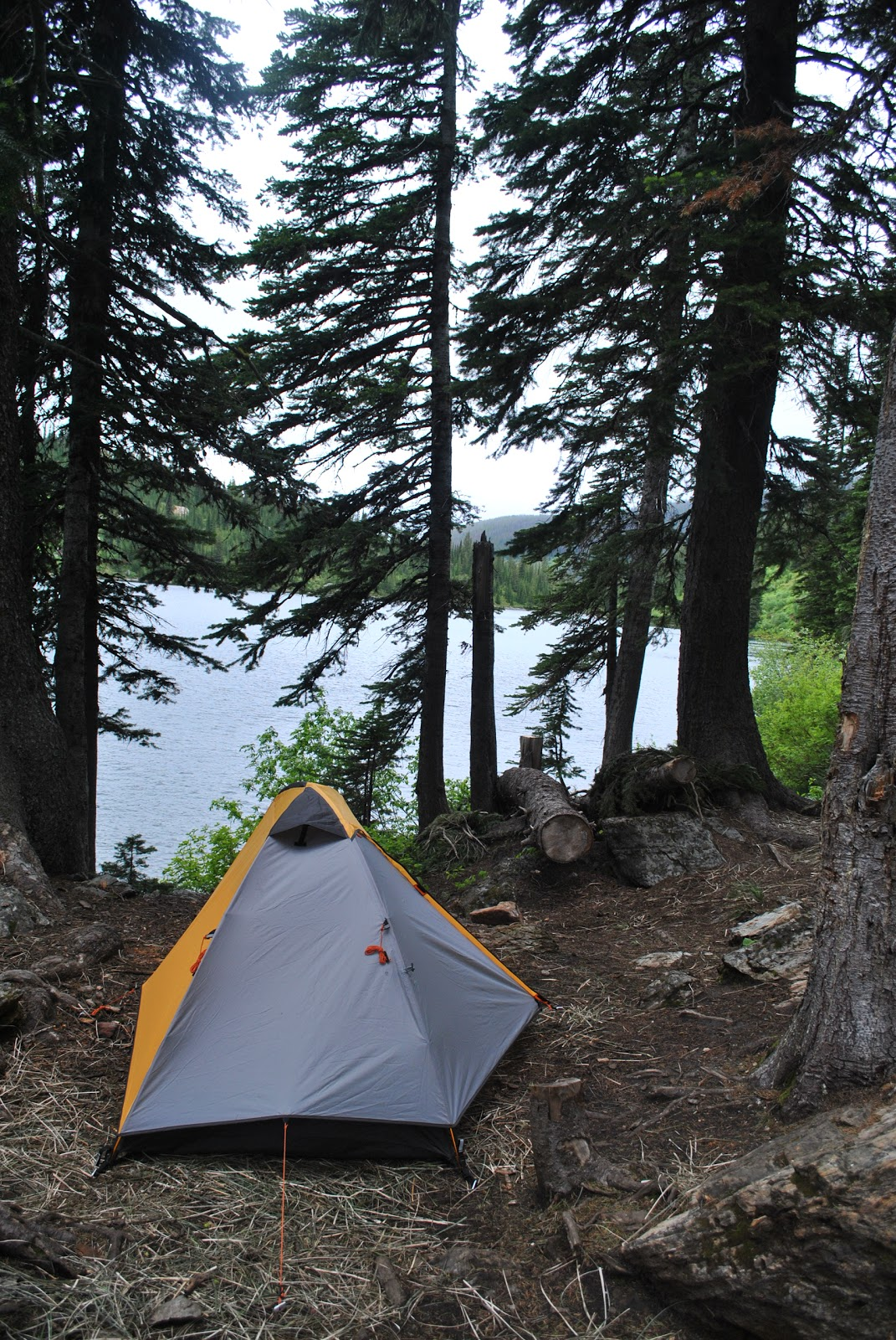 Tent & Writer in the Wild: Gear Review: Big Agnes Fairview 1
