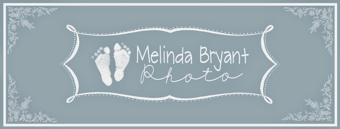Melinda Bryant Photography