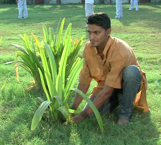 Nishit Mehta on Dhollywoodinfo.com