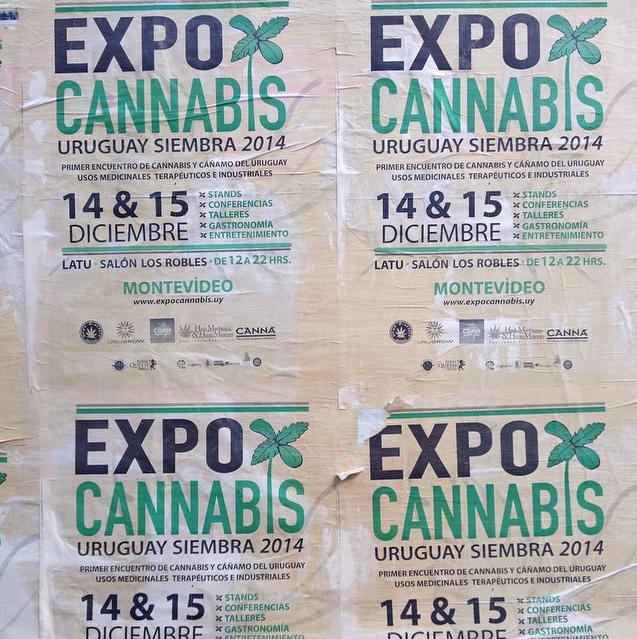 @expocannabisuy | #ExpoCannabis #UruguaySiembra2014 por un mundo más verde!